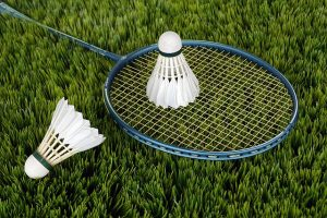 badminton-yard-game