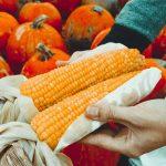 October Blog Post Ideas (31 Suggestions, Folks!)