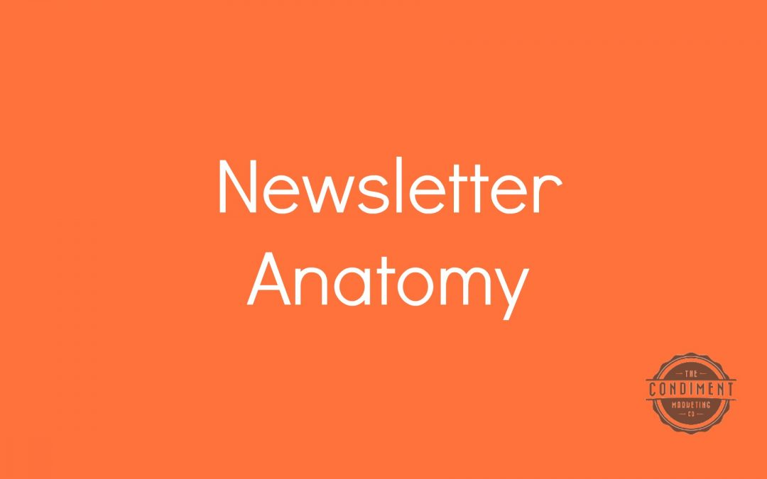 The Anatomy of a Newsletter Article