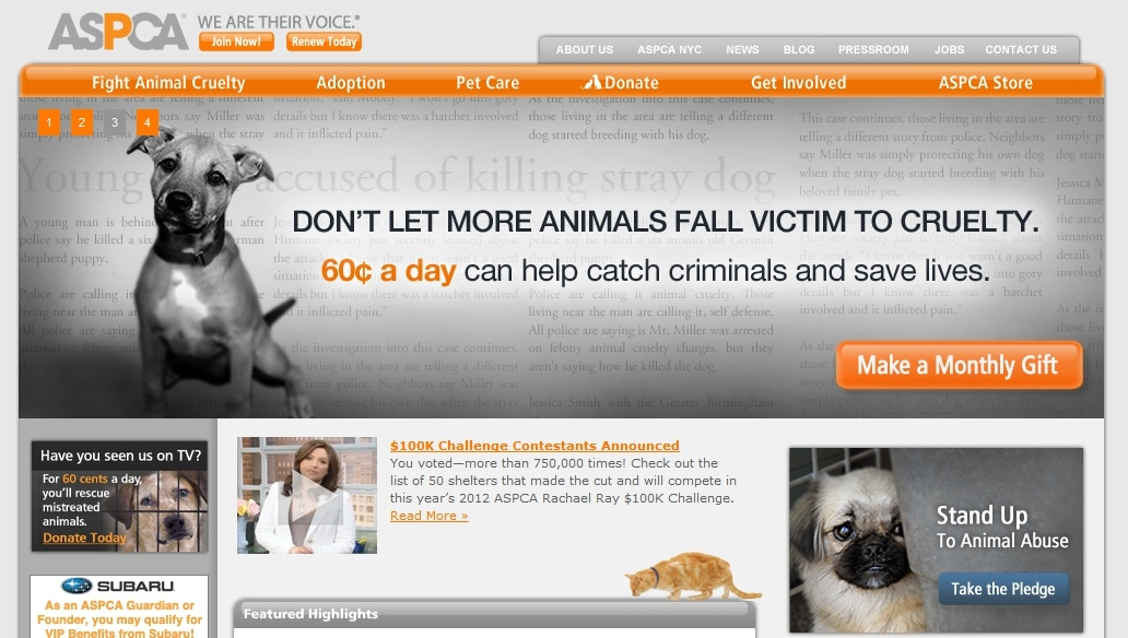 Cut Home Page Clutter: Animal Rescue Web Content Examples