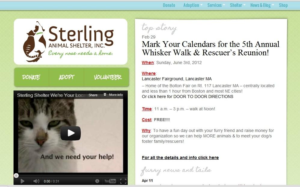 animal rescue website example