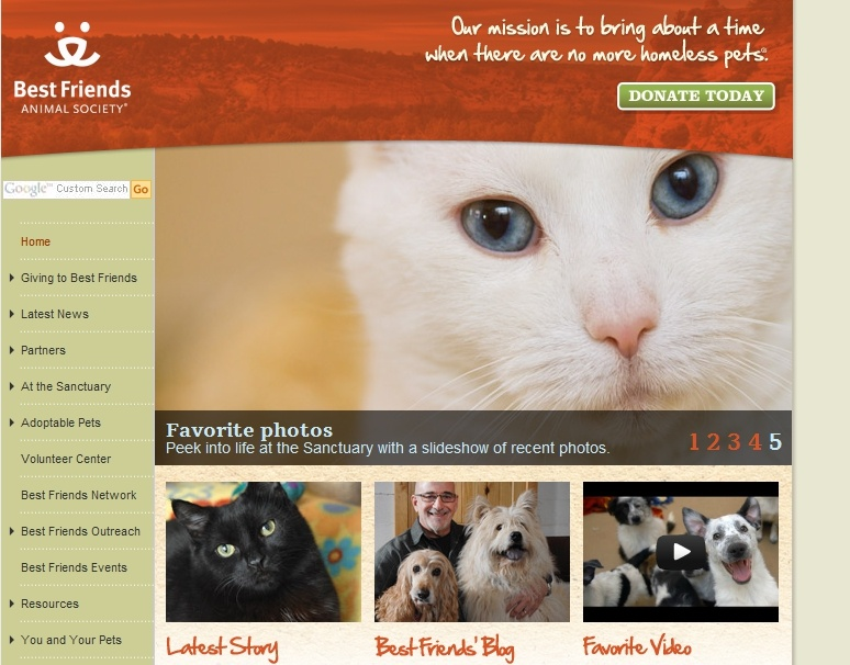 website content example for best friends animal rescue