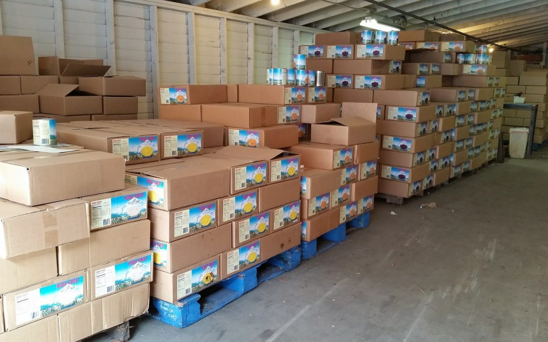 The Ecommerce and Shipping Conundrum